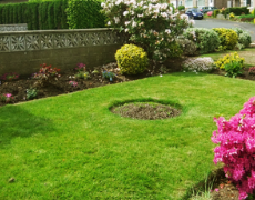 Lawn with circular flower bed